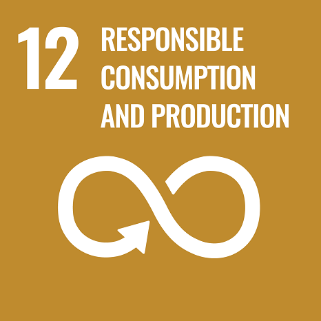 SDG 12 Responsible Consumption and Production