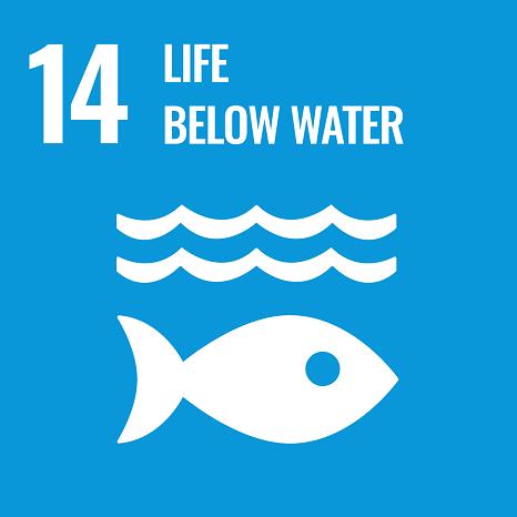 SDG 14 Life Below Water