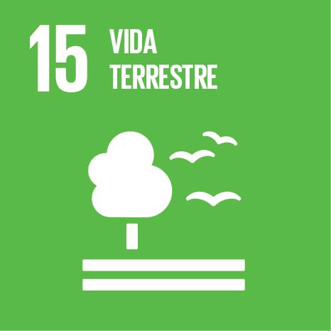 ODS 15 Vida Terrestre